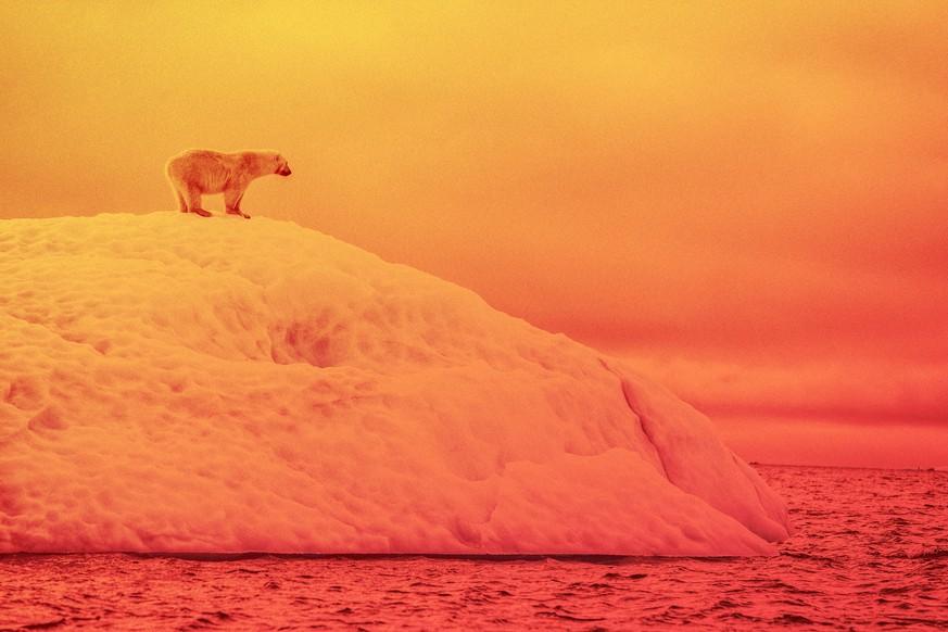 Eis schmilzt, der Meeresspiegel steigt – so sehr sind die Ozeane vom Klimawandel bedroht