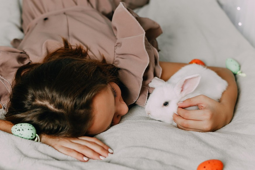 Rabbit pet care. Friendship of children and animals. People's love for nature. High quality photo