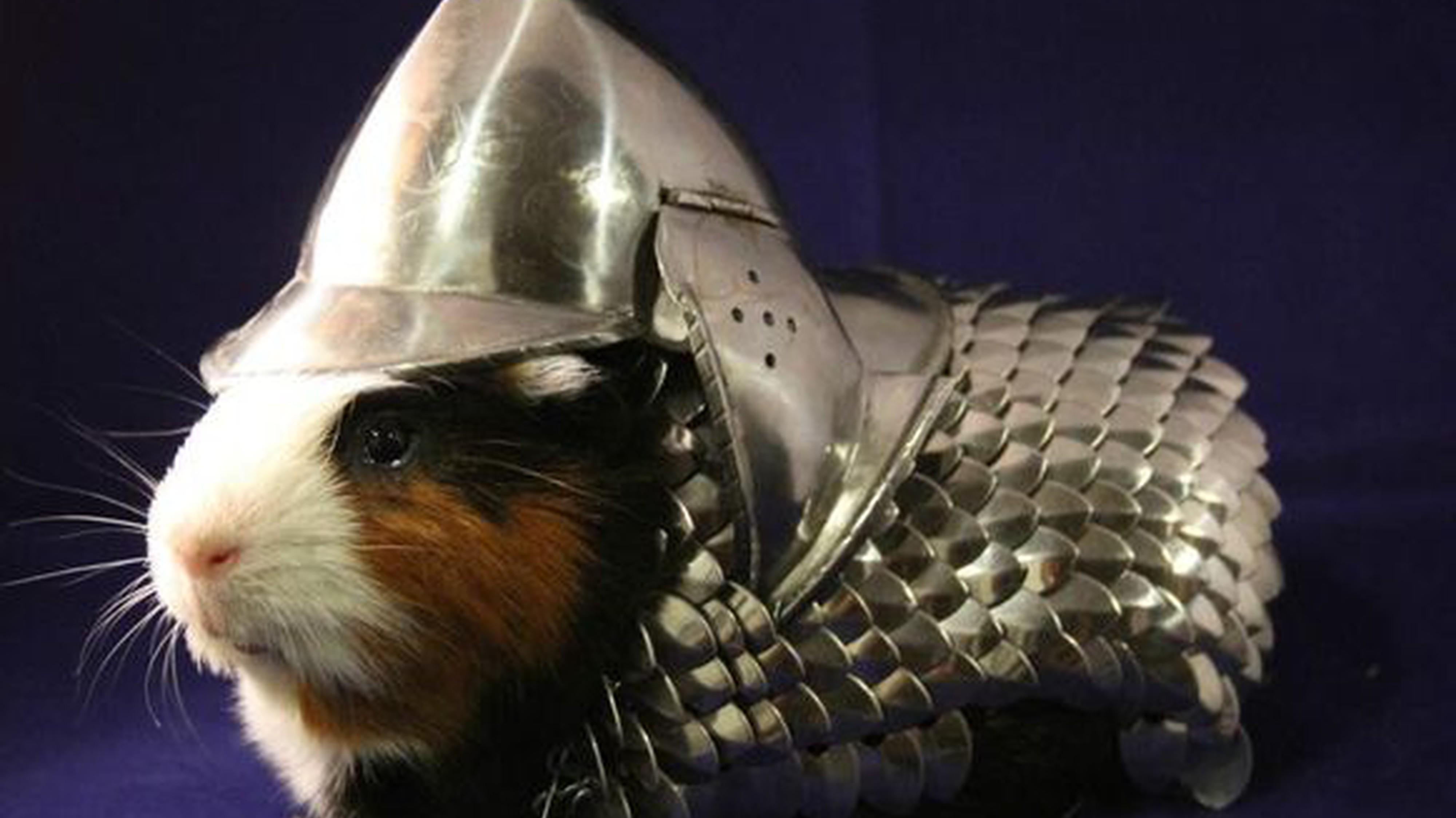 Eine Meerschweinchen-Rüstung und 9 weitere Dinge, die sich reiche Menschen halt so leisten