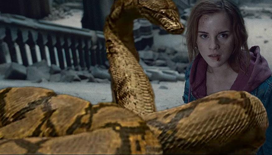 Harry Potter Geheimnis Um Schlange Nagini Wird Geluftet Watson