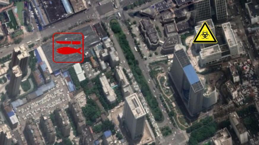 Coronavirus: Forscher verdächtigt Labor neben Wuhans Fischmarkt