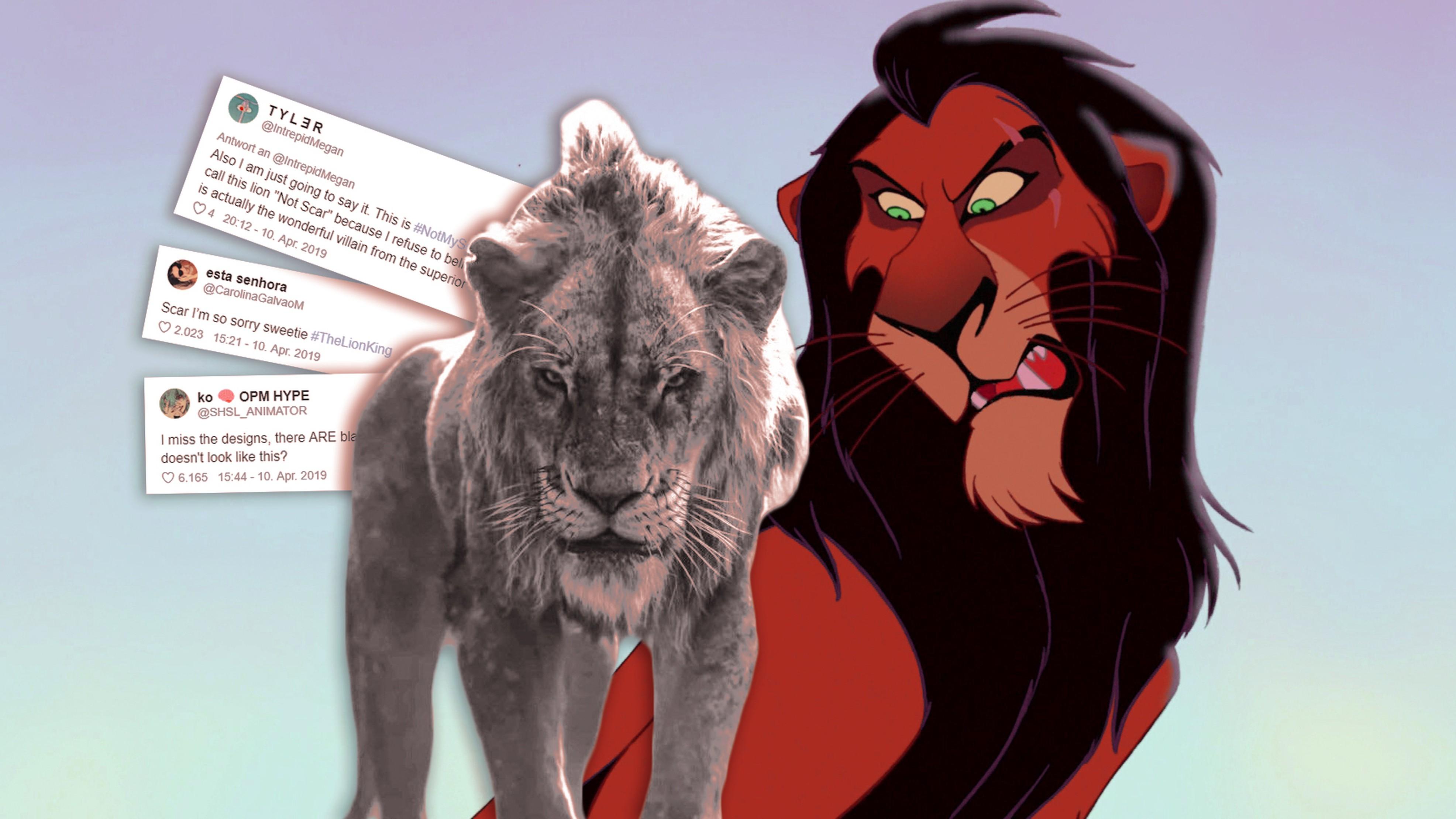 König Der Löwen Neuer Film