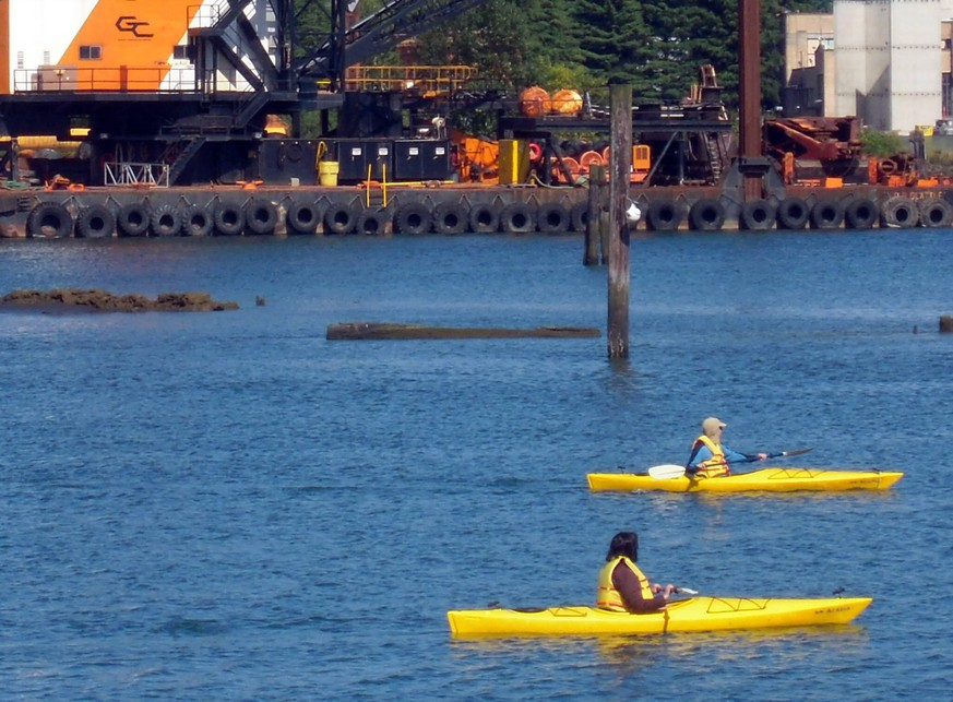 July 15, 2011 - Seattle, WA, USA - Kayakers make their way through the Duwamish River near Herring s House Park in Seattle, one of the most industrialized waterways in the state of Washington. A five-mile stretch of the lower Duwamish River is on the federal governments list of Superfund sites, making it one of the most contaminated places in the country. The Duwamish River flows into Puget Sound through Elliott Bay. PUBLICATIONxINxGERxSUIxAUTxONLY - ZUMAm67_ 20110715_zaf_m67_020 Copyright: xRobxHotakainenx  July 15 2011 Seattle Wa USA kayakers Make their Way Through The  River Near Herring S House Park in Seattle One of The Most industrialized waterways in The State of Washington a Five Mile Stretch of The Lower  River IS ON The Federal  List of Superfund Sites Making IT One of The Most contaminated Places in The Country The  River flows into Puget Sound Through Elliott Bay PUBLICATIONxINxGERxSUIxAUTxONLY  20110715_zaf_m67_020 Copyright xRobxHotakainenx