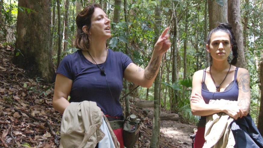 Dschungelcamp 2020 Nach Rekord Prufung Streit Zwischen