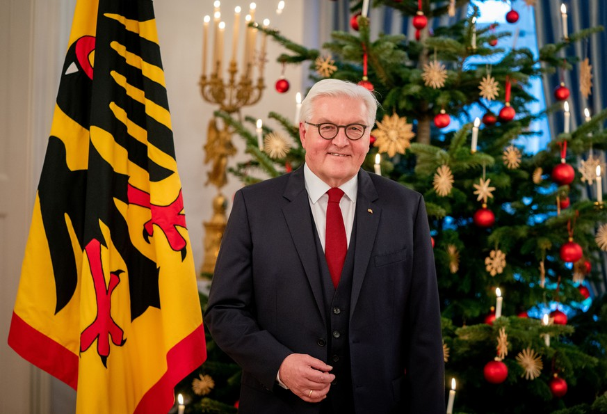 German President Frank-Walter Steinmeier stands in front of a Christmas tree at Bellevue Palace during a photo session for his Christmas address in Berlin, Germany December 20, 2019. Picture taken December 20, 2019.  Kay Nietfeld/Pool via REUTERS