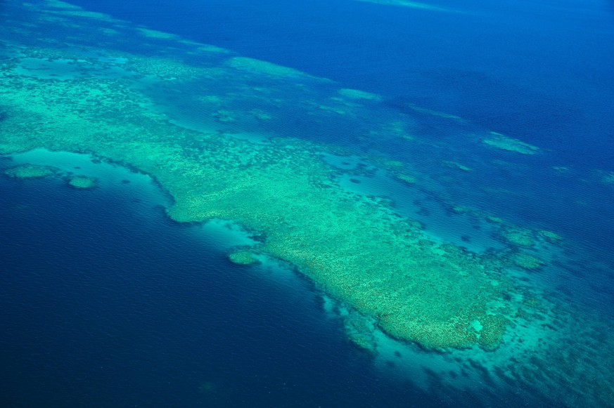 Great Barrier Reef, Coral Reef, Island, Overhead, Aerial, Panorama PUBLICATIONxNOTxINxCHN 195564567016767631