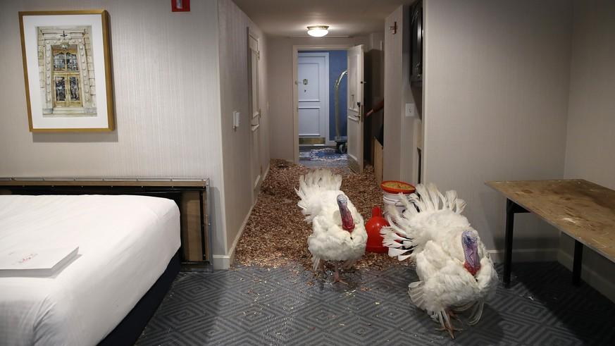 Die übelsten Dinge, die Hotelgäste zurückließen