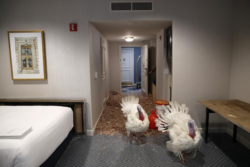 Hotel-Angestellte berichten von den übelsten Hinterlassenschaften ihrer Gäste