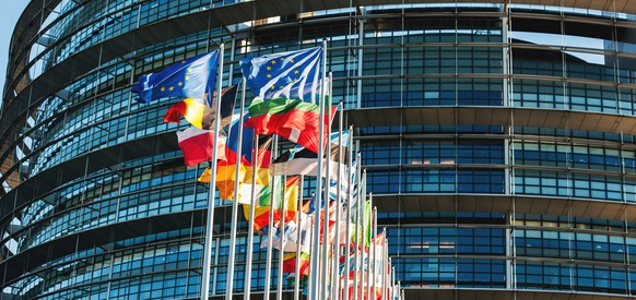 Strasbourg, France - January 28, 2014: All EU members flags in front of the European Parliament in Strasbourg, France