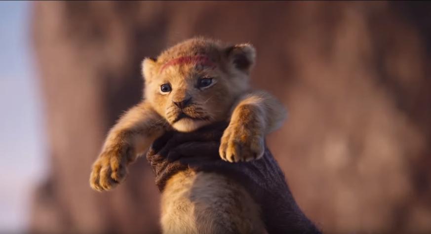 """Wie sich der neue """"König der Löwen"""" anfühlt, wenn man 1994 noch nicht geboren war"""