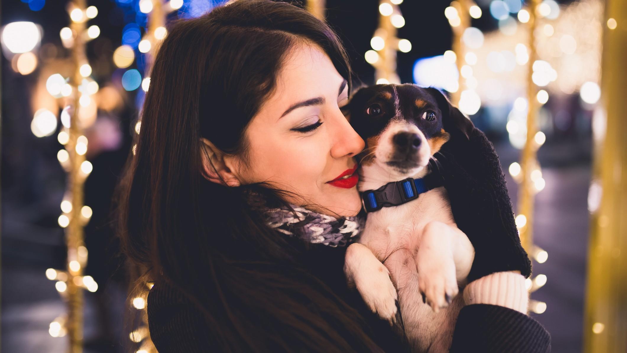Silvester: 5 Tipps, wenn dein Hund Angst vor lautem Feuerwerk hat