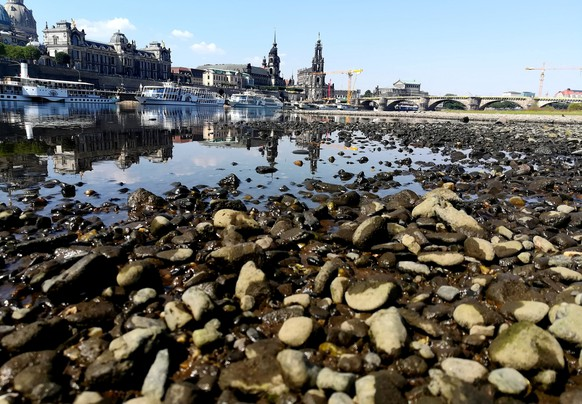 Sightseeing boats sit at the Elbe river in Dresden after water levels dropped to an extreme low this summer, Germany, July 31, 2018.      REUTERS/Fanny Brodersen      TPX IMAGES OF THE DAY