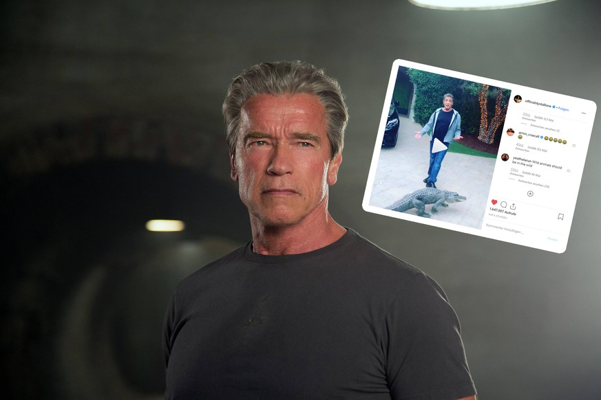RELEASE DATE: July 1, 2015 TITLE: Terminator Genisys STUDIO: Paramount Pictures DIRECTOR: Alan Taylor. PLOT: After finding himself in a new time-line, Kyle Reese teams up with John Connor s mother Sarah and an aging terminator to try and stop the one thing that the future fears, Judgement Day PICTURED: ARNOLD SCHWARZENEGGER as Terminator PUBLICATIONxINxGERxSUIxAUTxONLY - ZUMAl90