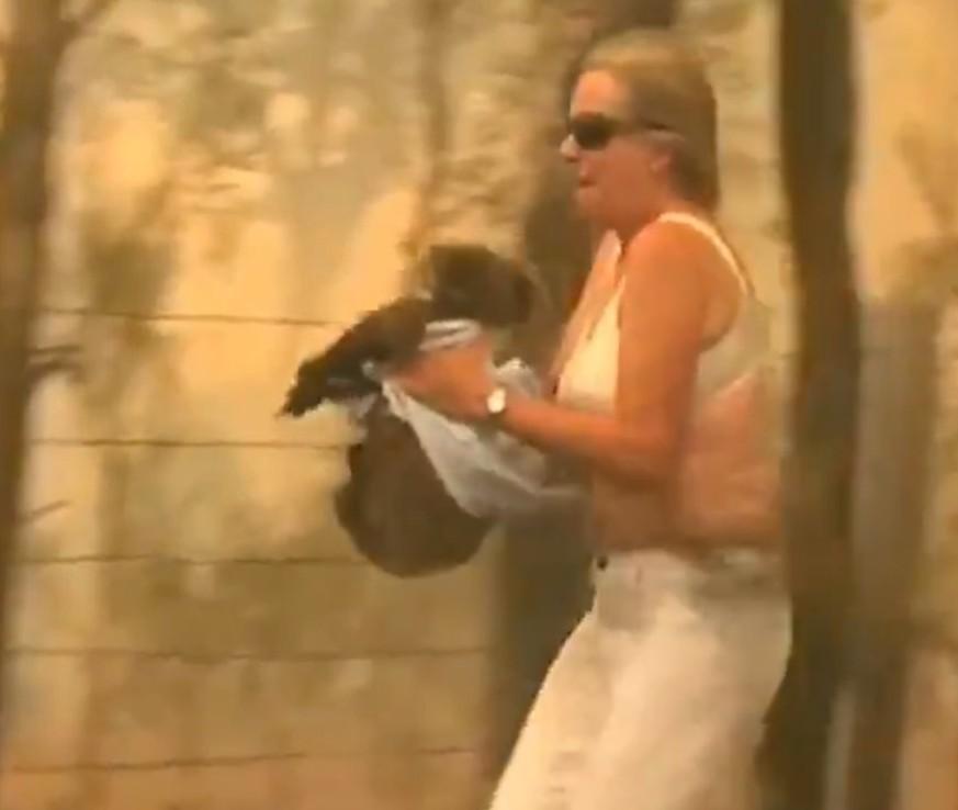 Frau rettet Koala vor Flammentod – dieses Video zeigt die brutalen Feuer in Australien